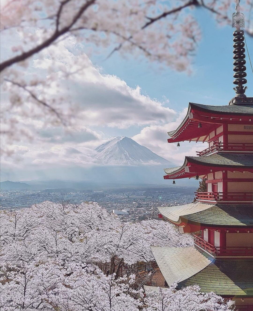 成都出发,2019年日本赏樱路线,纯干货